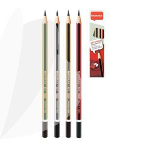 Pieštukai NATARAJ įvairių spalvų HB, 12 vnt., drožtukas ir trintukas