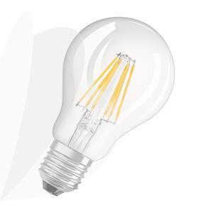 Lemputė LED A60 E27 8W