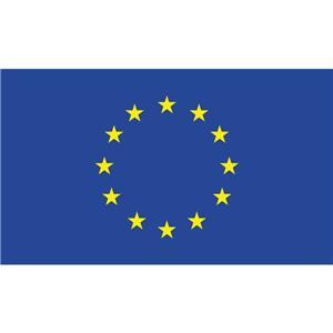 Europos sąjungos vėliava, 100 x 150 cm.